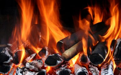 Where to Buy Wood Chips for Smoking